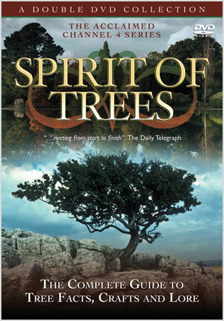 Spirit Of Trees