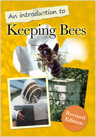 An Introduction To Keeping Bees