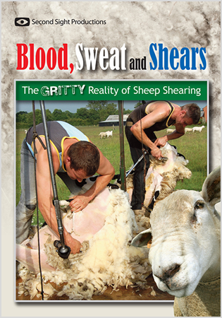 Blood, Sweat And Shears: The Gritty Reality of Sheep Shearing