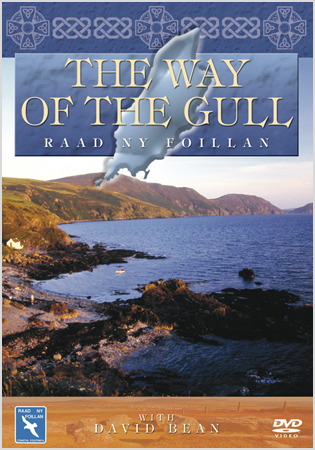 The Way Of The Gull